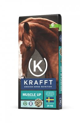 Krafft Muscle Up